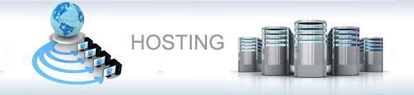 hosting-usluge